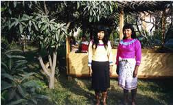 AMAZONIA COMUNIDAD SHIPIBO